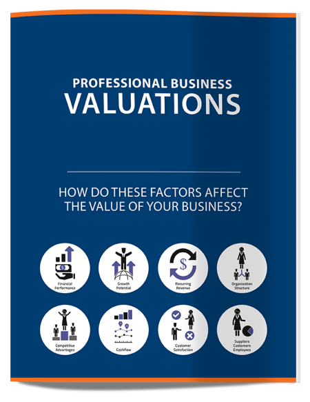 profbusinessvaluations-12pg-cover-ds-lo